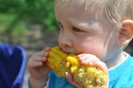 baby_eat_corn
